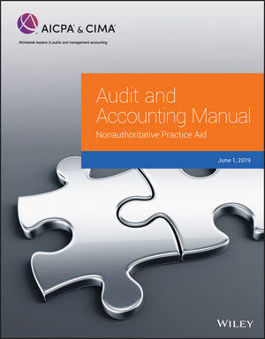 <span class='search-highlight'>Audit</span> and Accounting Manual: Nonauthoritative Practice Aid, 2019