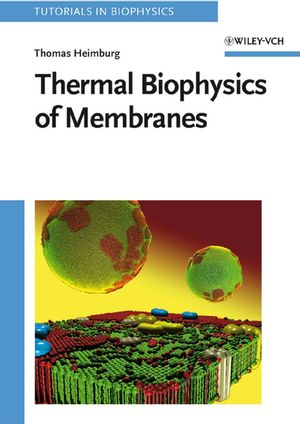 Thermal Biophysics of Membranes (3527611606) cover image