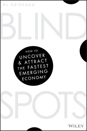 Blind Spots: How to uncover and attract the fastest emerging economy (0730345408) cover image