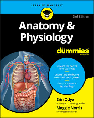 Anatomy and Physiology For Dummies, 3rd Edition (1119345308) cover image