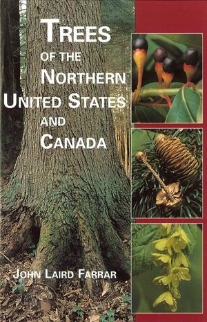 Trees of the Northern United States and Canada (081382740X) cover image