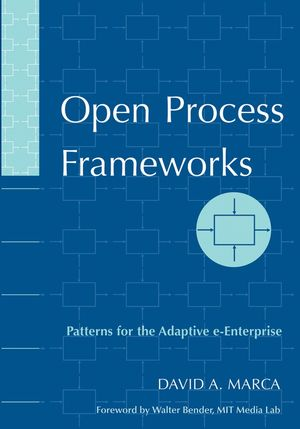 Open Process Frameworks: Patterns for the Adaptive e-Enterprise