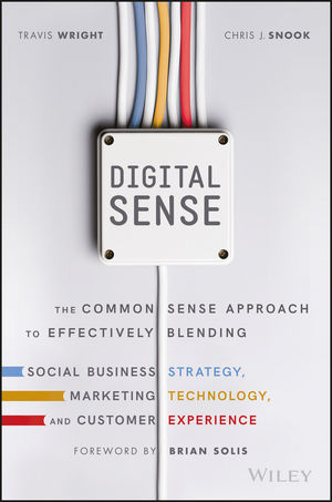 Digital Sense: The Common Sense Approach to Effectively Blending Social Business Strategy, Marketing Technology, and Customer Experience (1119291712) cover image