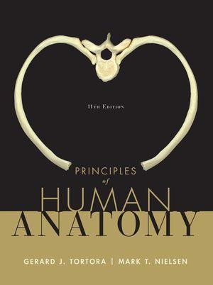 Principles Of Human Anatomy 11th Edition Anatomy Physiology