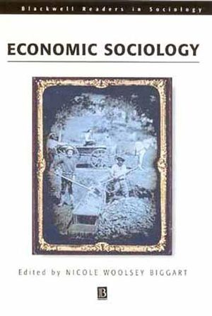 Readings in Economic Sociology (0631228616) cover image