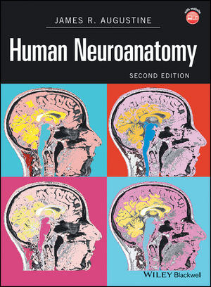 Human Neuroanatomy, 2nd Edition (0470961619) cover image