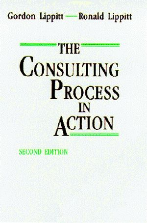 The Consulting Process in Action, 2nd Edition