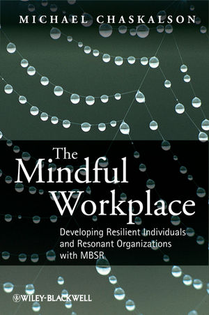 The Mindful Workplace: Developing Resilient Individuals and Resonant Organizations with MBSR (111997691X) cover image