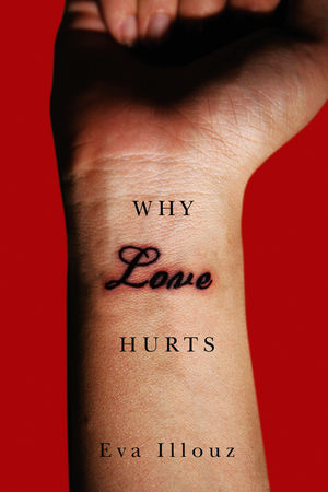 Why Love Hurts: A Sociological Explanation (0745661521) cover image