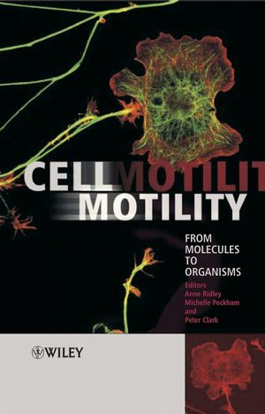 Cell Motility: From Molecules to Organisms (0470848723) cover image
