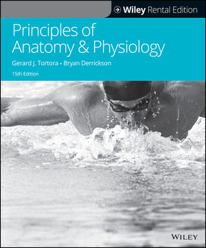 holes human anatomy and physiology 15th edition