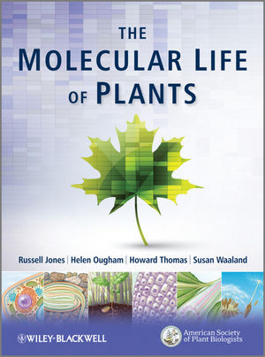 Book Cover Image for The Molecular Life of Plants