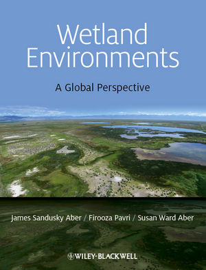 Book Cover Image for Wetland Environments: A Global Perspective