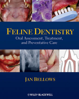 Feline Dentistry: Oral Assessment, Treatment, and Preventative Care (0813816130) cover image