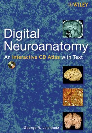 Digital Neuroanatomy