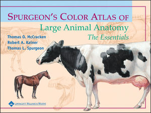 Spurgeon's Color Atlas of Large Animal Anatomy: The Essentials