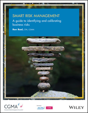 Smart Risk Management: A Guide to Identifying and Calibrating Business Risks (1940235332) cover image