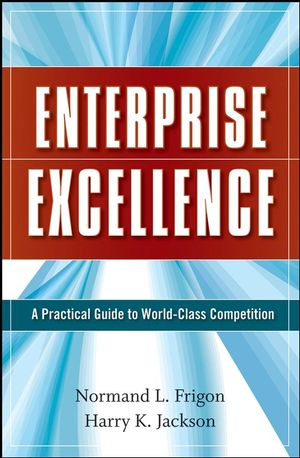 Enterprise Excellence: A Practical Guide to World Class Competition (0470274735) cover image