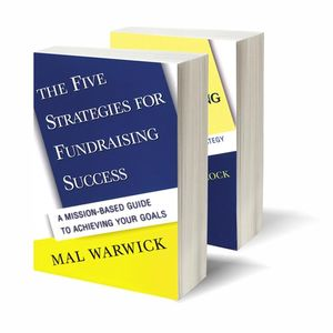 Fundraising Success Set (The Five Strategies for Fundraising Success & Ten Steps to Fundraising Success)