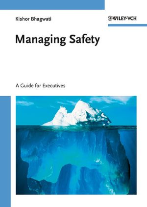 Managing Safety: A Guide for Executives (3527315837) cover image