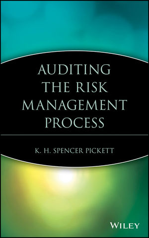 Auditing the Risk Management Process