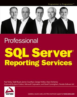 Professional SQL Server Reporting Services (0764576941) cover image