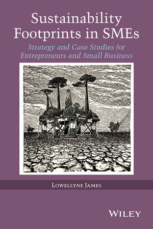Sustainability Footprints in SMEs: Strategy and Case Studies for Entrepreneurs and Small Business (1118779444) cover image