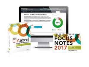 Wiley CIAexcel Exam Review + Test Bank + Focus Notes 2017: Part 2, Internal Audit Practice Set