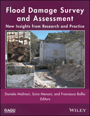Flood Damage Survey and Assessment: New Insights from Research and Practice (1119217946) cover image