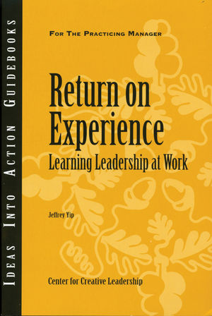 Return on Experience (1604910747) cover image