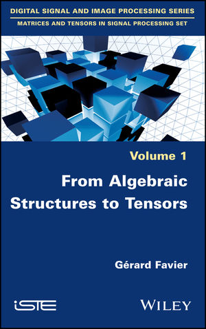 From Algebraic Structures to Tensors