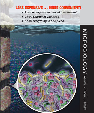 Microbiology: Applications and Connections 1e Binder Ready Version + WileyPLUS Registration Card