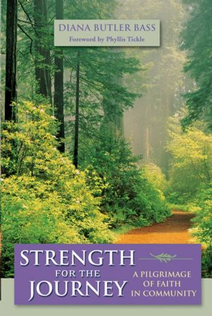 Strength for the Journey: A Pilgrimage of Faith in Community (0787974250) cover image