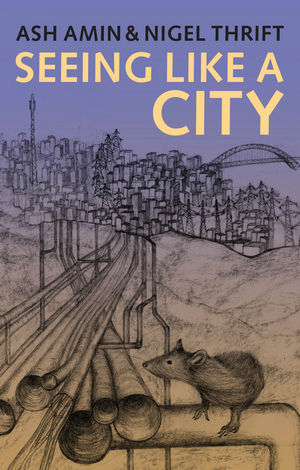 Seeing Like a City (0745664253) cover image