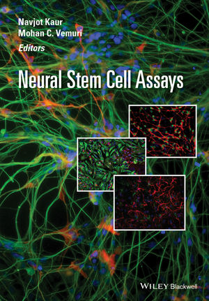 Neural Stem Cell Assays (1118308255) cover image