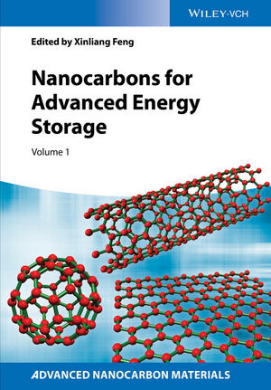 Nanocarbons for Advanced Energy Storage, Volume 1