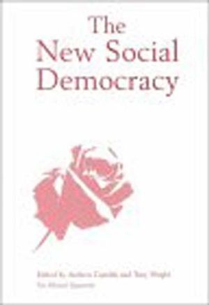 The New Social Democracy