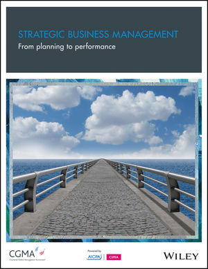 Strategic Business Management: From Planning to Performance (1937352358) cover image
