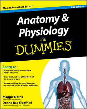 Anatomy and Physiology For Dummies, 2nd Edition (0470923261) cover image