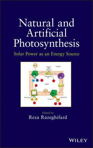 Natural and Artificial Photosynthesis: Solar Power as an Energy Source (1118160061) cover image