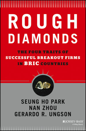Rough Diamonds: The Four Traits of Successful Breakout Firms in BRIC Countries (1118589262) cover image