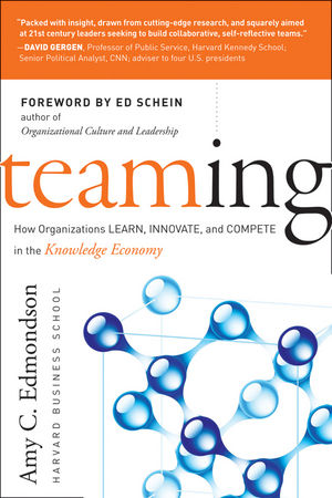 Teaming: How Organizations Learn, Innovate, and Compete in the Knowledge Economy (1118216768) cover image