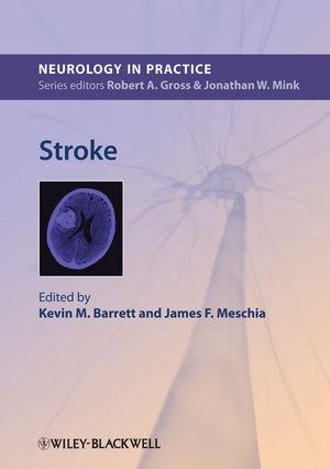 Stroke (0470674369) cover image