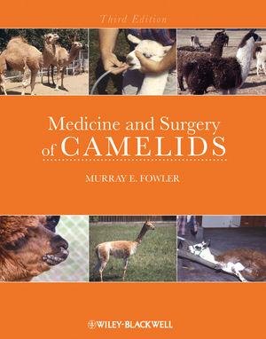 Medicine and Surgery of Camelids, 3rd Edition (081380616X) cover image