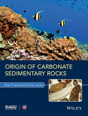 Origin of Carbonate Sedimentary Rocks (1118652673) cover image