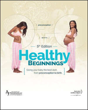 Healthy Beginnings: Giving Your Baby the Best Start, from Preconception to Birth, 5th Edition (1119283973) cover image