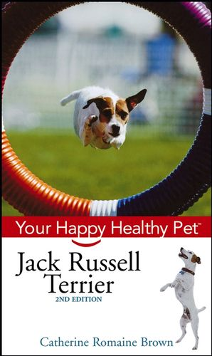 Getting Active with Your Dog