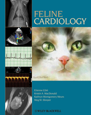 Feline Cardiology (0470960175) cover image