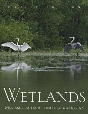 Wetlands, 4th Edition (0471699675) cover image