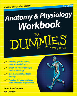 Anatomy and Physiology Workbook For Dummies, 2nd Edition